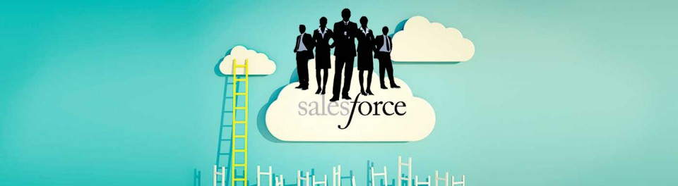 Salesforce Everywhere